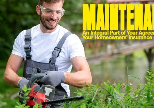 Maintenance An Integral Part of Your Agreement with Your Homeo